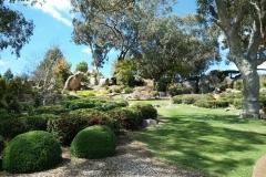 Bonsai Buddies at Mayfield Gardens