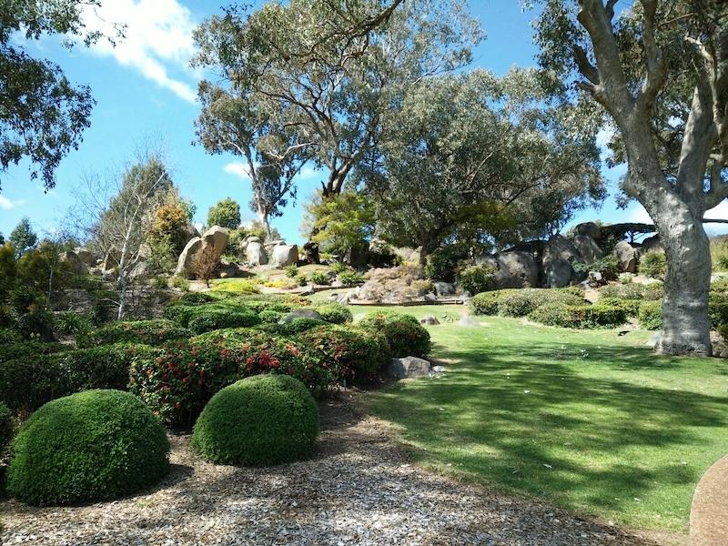 Bonsai Buddies visit to the Cowra Japanese Gardens